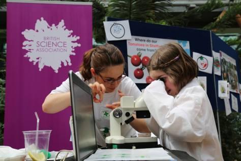 Picture microscope